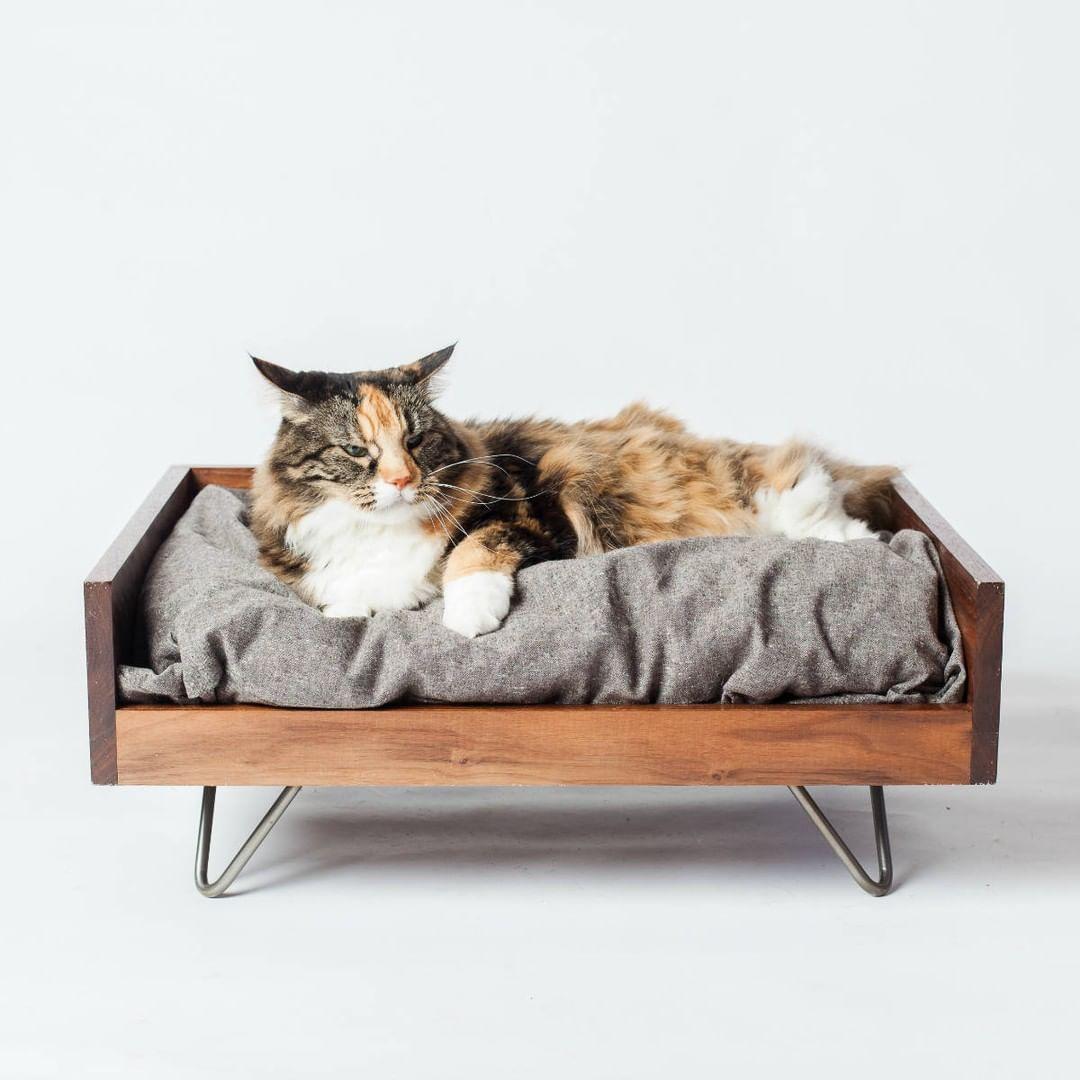 Mid Century Modern Cat Bed