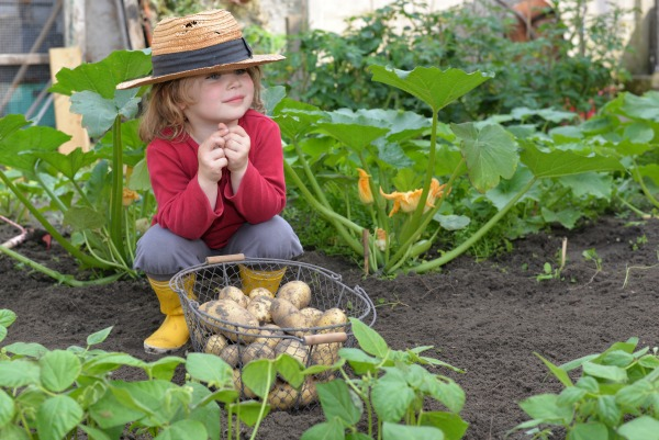 gardening-with-kids-growing-a-garden-.jpg