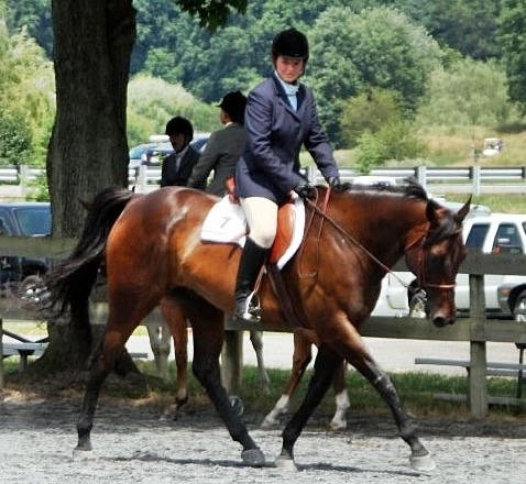 Heidi and her horse Chili