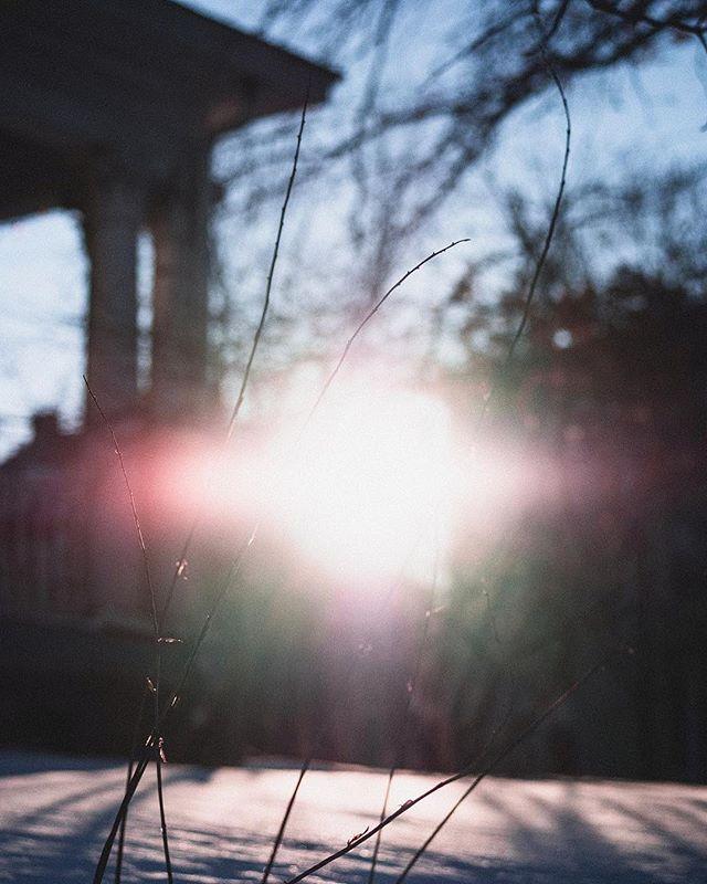 23/365  Sunsticks.  #365daychallenge #365project #minimalmonday #minimalzine #leviallen #habitsofexcellence #iowacity #blue #sky #sun #snow