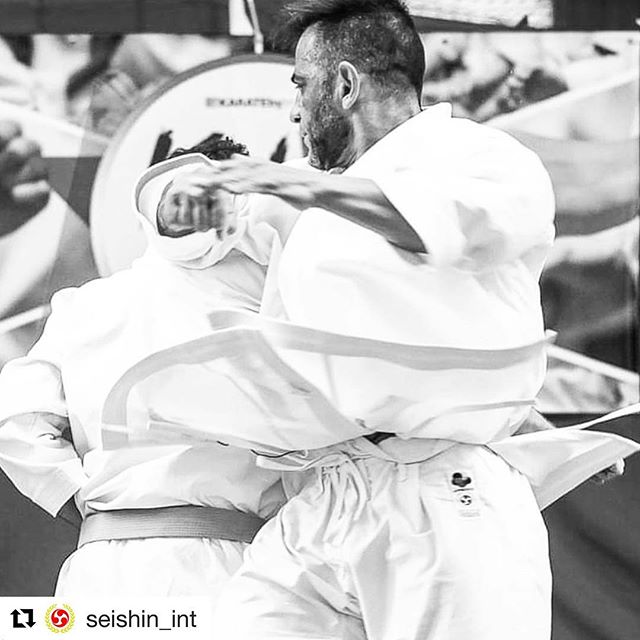 What a shot!  #Repost @seishin_int ・・・ Do you practice spinning #karate techniques? 🌀 They are difficult but devastating! #SeishinGi 👊💥