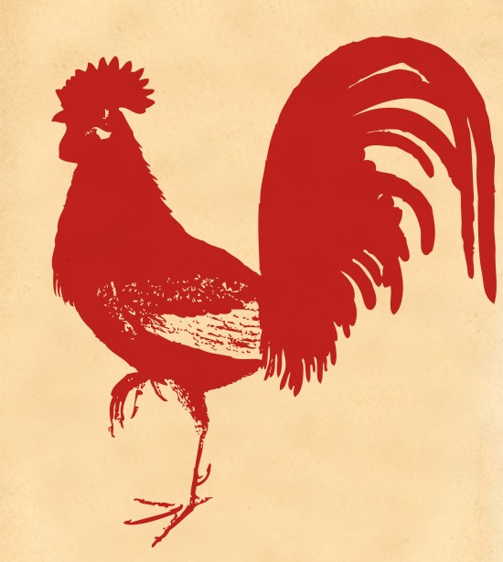 Fire Rooster Year 2017. (Photo:   CC0 Public Domain  )