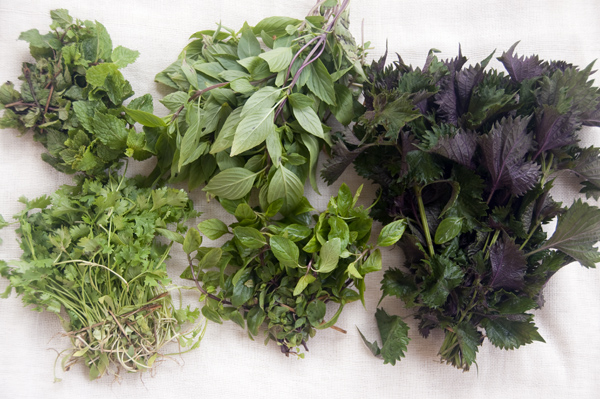 Herbs are an essential part of Vietnamese cuisine and add flavor and texture to the dish. (Photo: Loa)
