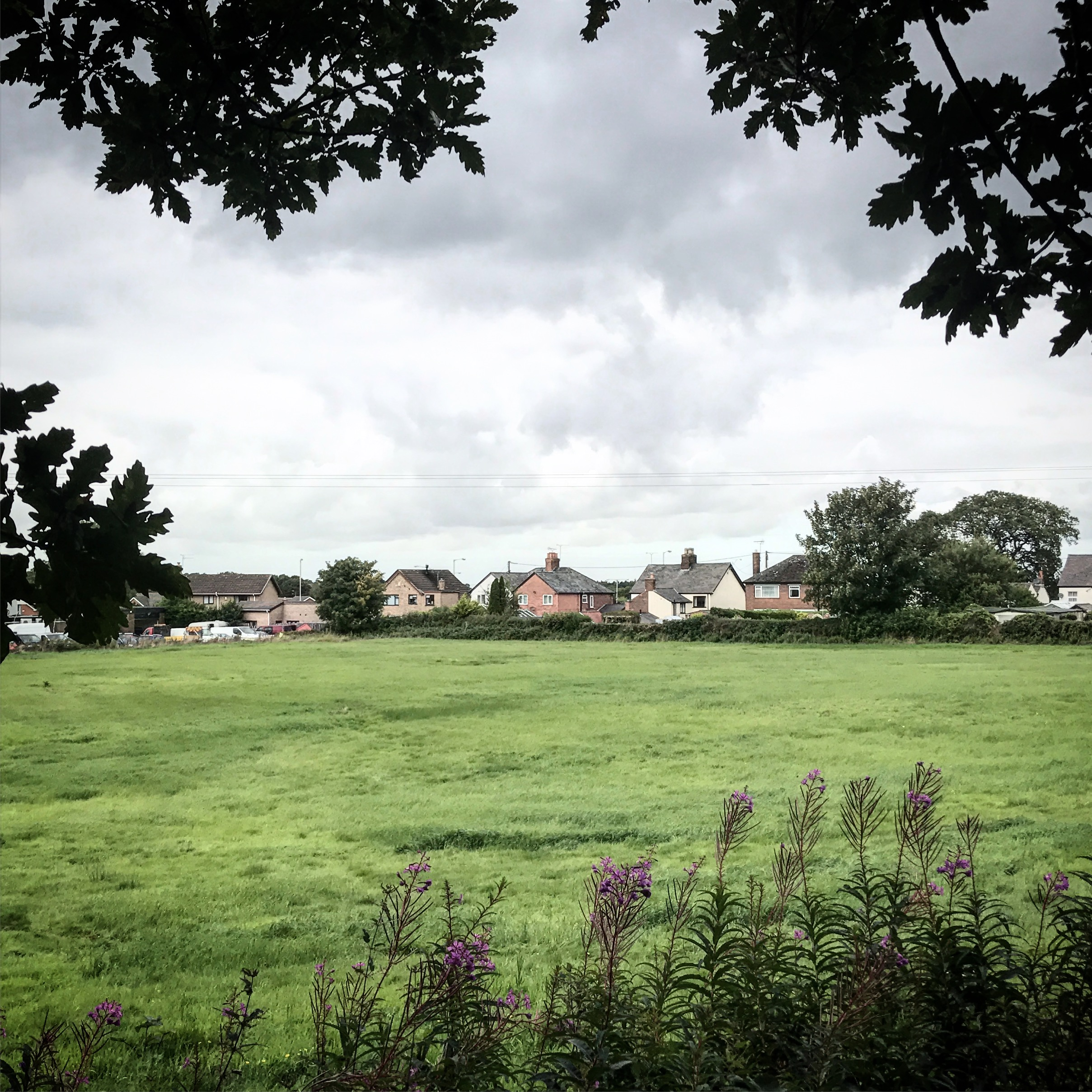 This field is one of two other sites proposed for development in Dobshill