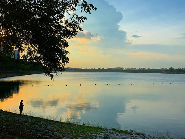 One of the perks of where I work is the opportunity to go for a run at the park next door after work with this view ❤️ #sunset #park #run #singapore #standardcharteredmarathon2019 #tpdesign #temasekpoly #openskies #fishing