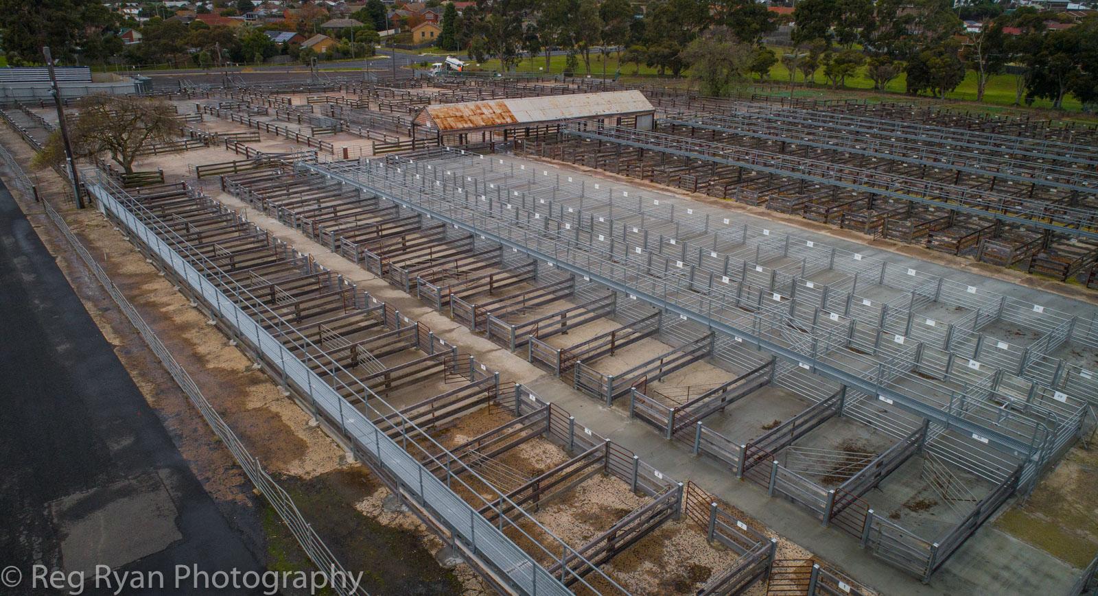 Geelong Saleyards, Nth Geelong