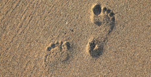 footprint-2353510_1280.jpg