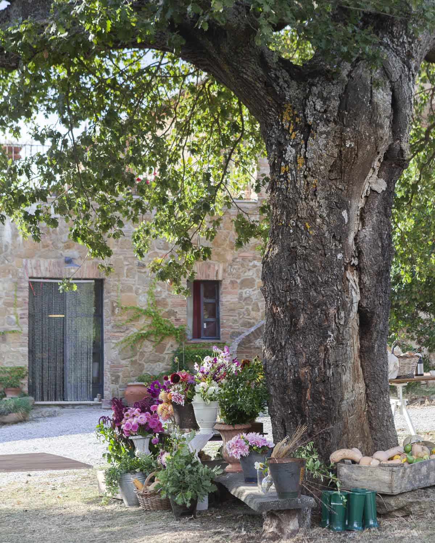 Toscana-1.jpg