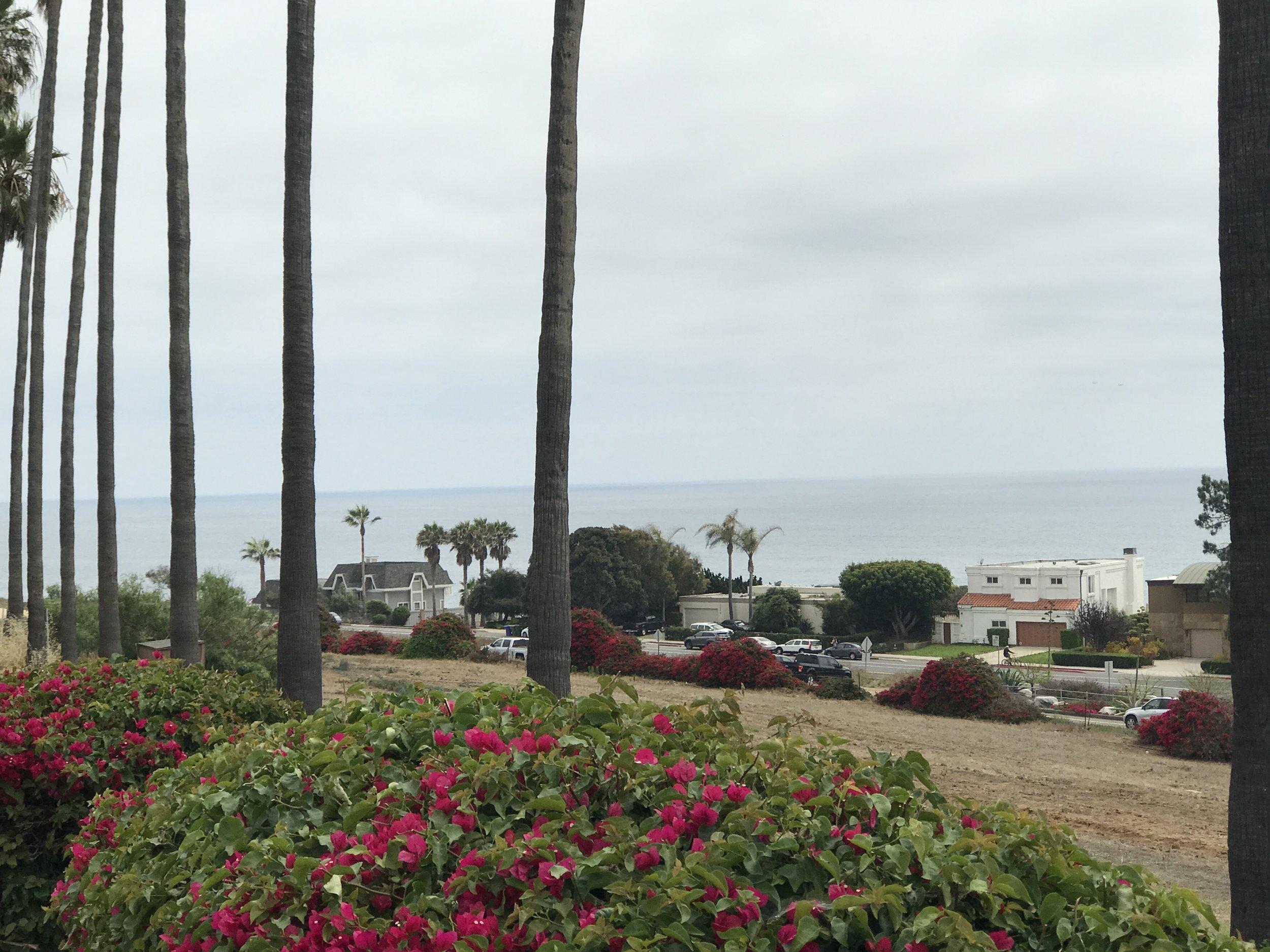 Beautiful Encinitas, San Diego