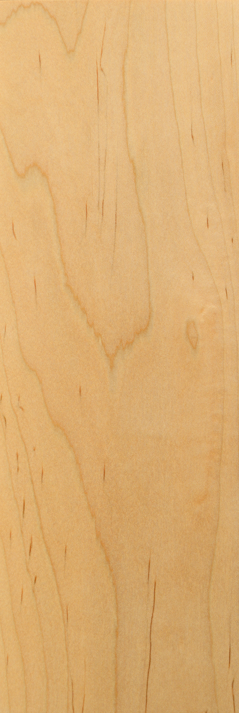 Oiled Maple