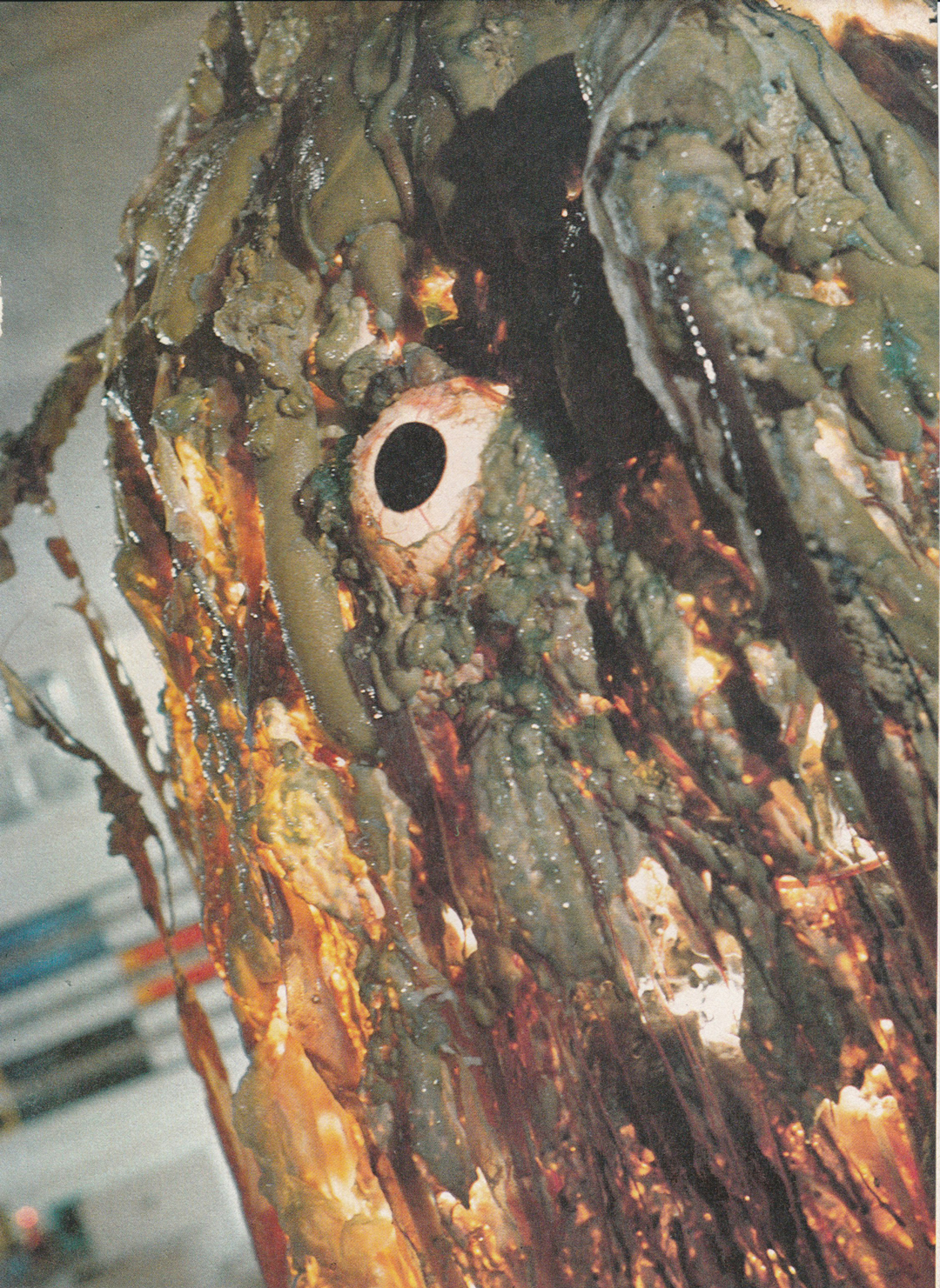 Pumping blood and strobing lights - A single large eye made the Alien into a `cyclop`.Veins for pumping blood were made for plasticized PVC tube and an internal peristaltic pump was used to make the blood flow.As the latex skin was semi translucent a light strobing system inside the Alien proved to be quite effective.The final disgusting slimy skin was made by randomly throwing expanding Polyurethane over the latex skin. A dribble of oil & `Slime` completed the effect….A bit smelly, but a good effort to represent Keith Wilson`s sketch.