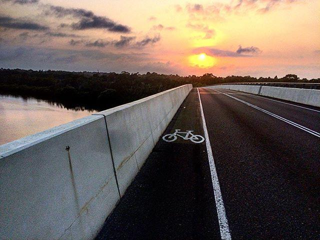 Love an early spin... . . . @mikeonus  #getoutthere #ride #earlybird #noosa #fknhot #artofendurance #wymtm
