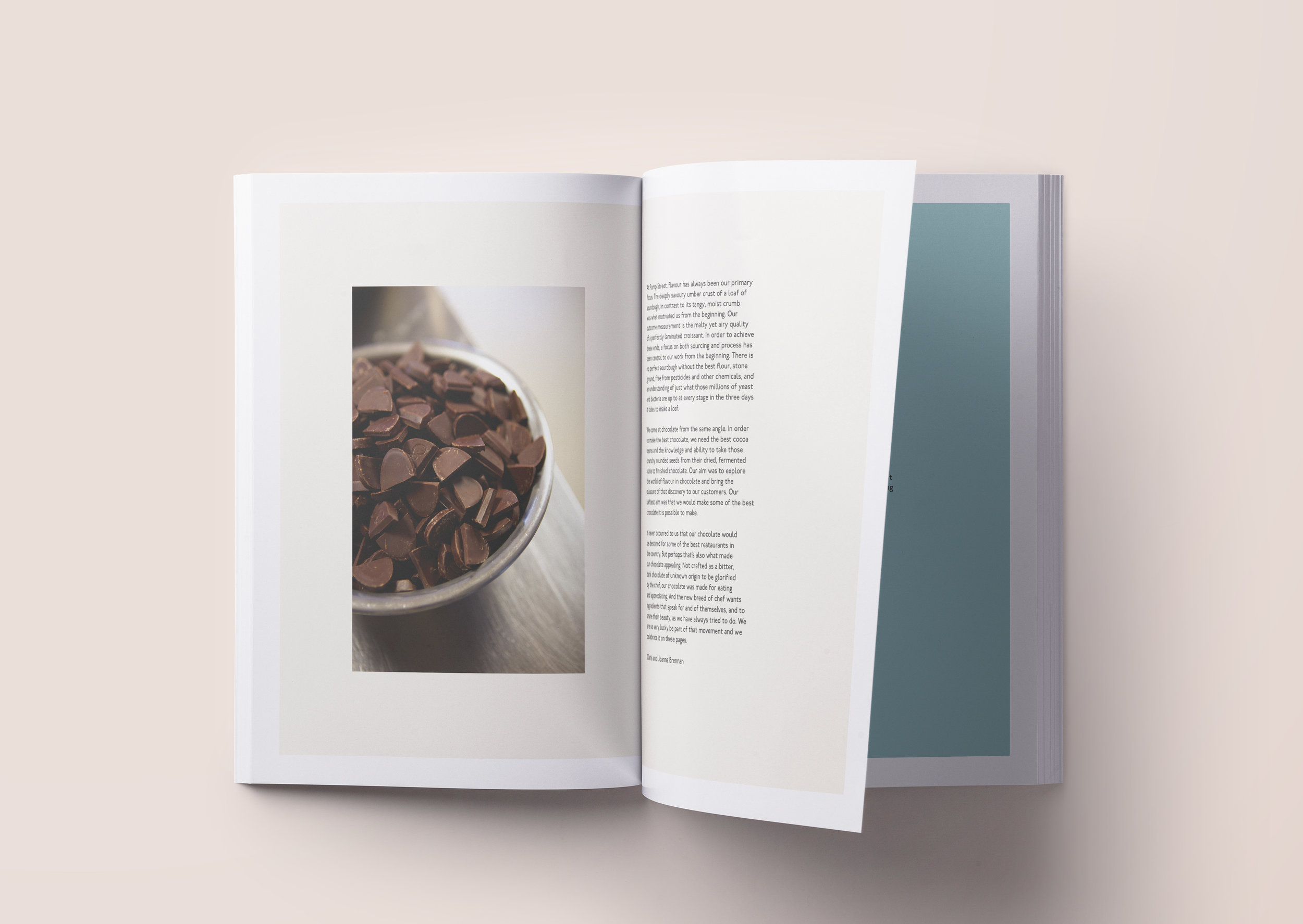 Pages 8-9.jpg