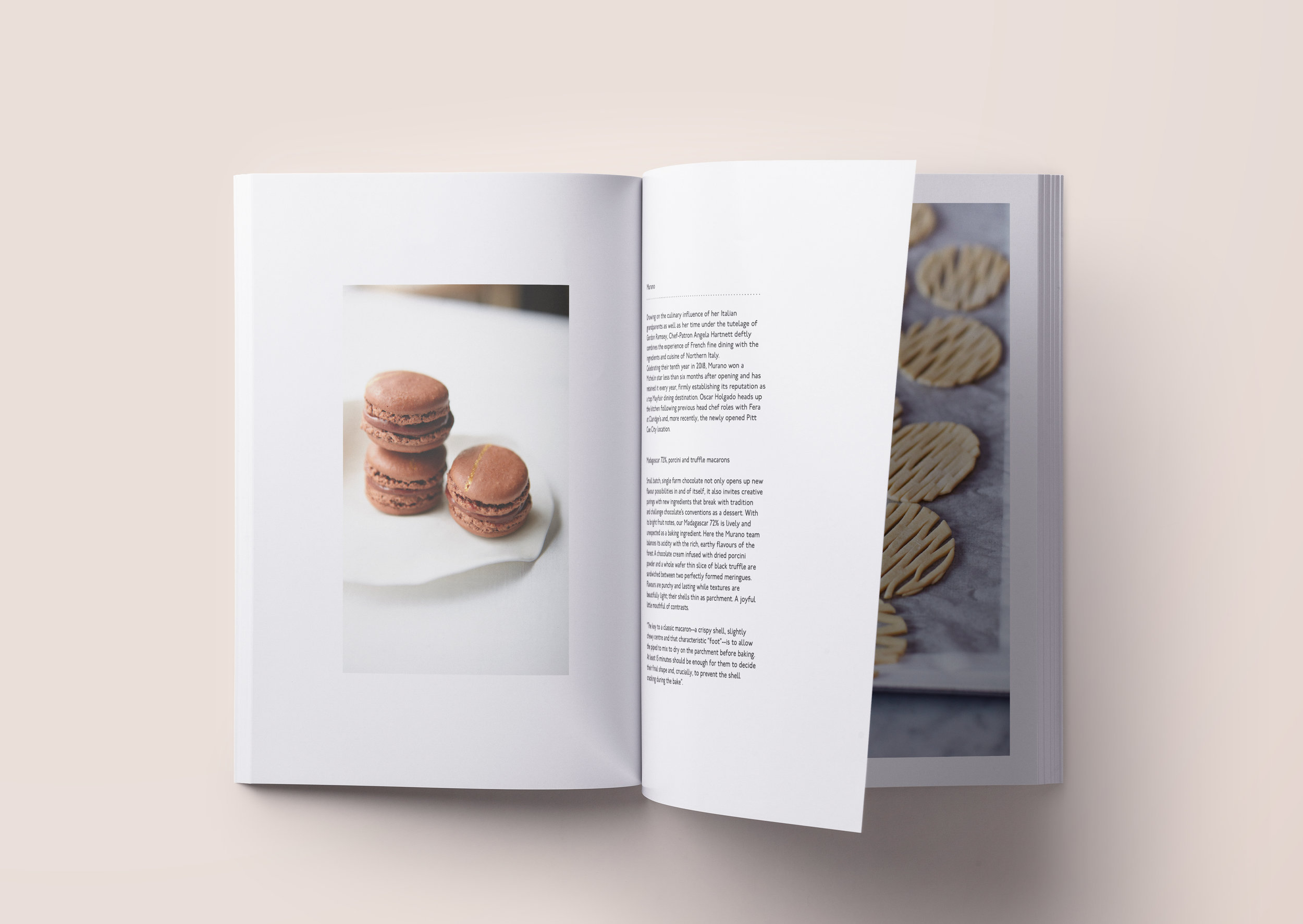 Pages 48-49.jpg