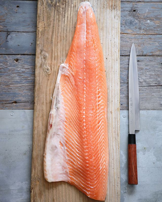 We are looking forward to our next event at  @the_merchants_table on Saturday 28th October at 6.30pm.  A favourite client of ours, Silla Bjerrum @sillasild, will perform a demonstration of nose to tail eating with a whole sustainable salmon, while Clement of @smashingwines serves you his well considered wine pairing. - - - Nose to Tail Salmon Tasting Menu -  Salmon Miso - Salmon Sashimi + Salmon Tartare Landron Muscadet Sevre et Maine, Amphibolite, 2018 - Seaweed Seasonal Salad Umami Dressing Salmon selection with Green Salmon Maki, Hoso Maki & Nigiri Selection Cave de Turckheim, Cremant D'Alsace, Brut - Salmon Skin Snack - Yuzu Polenta Cake Domaine de Pellehaut, L'Ete Gascon, 2018 -  Very much worth a trip to Suffolk for! 🍣✨🍣✨🍣✨ - - - The beautiful photo is by @nordljus from Silla's last book. - - - #sillabjerrum #sustainable #salmon #sushi #themerchantstable #suffolkmerchant #design #creative #thepleasurefoodgives