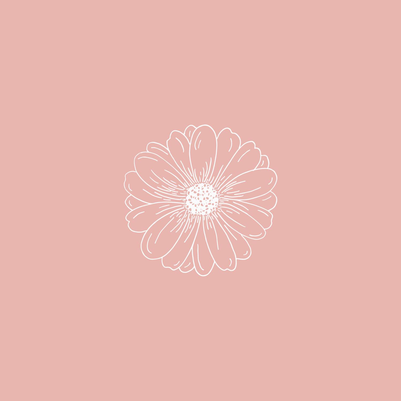 #the100dayproject daisy flower illustration Bea & Bloom | Creative Design Studio