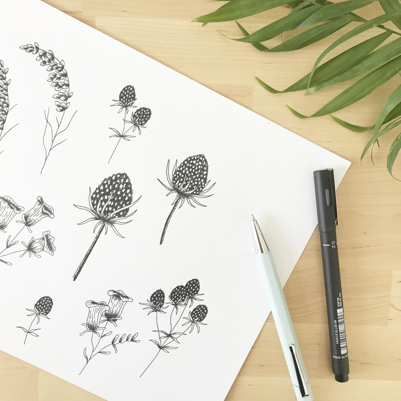 Vanessa Jaclyn Photography Logo & Branding by Bea & Bloom Creative Design Studio Sketchbook