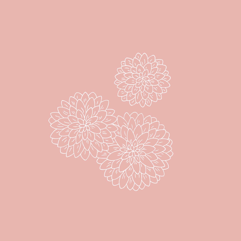 Dahlia illustration - The Language of Flowers - Bea & Bloom Creative Design Studio
