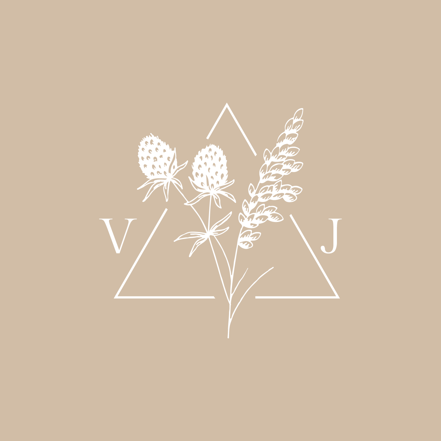 Vanessa-cover.png