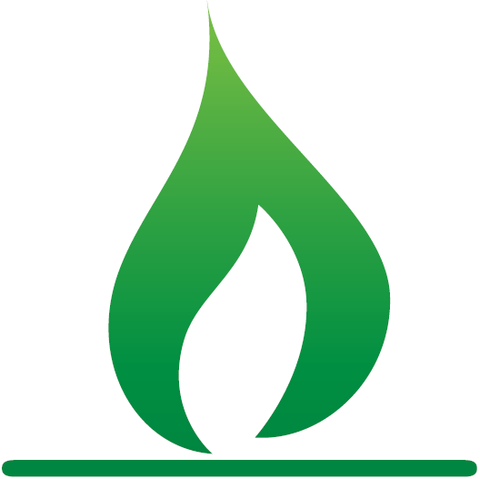 CNG icon.png