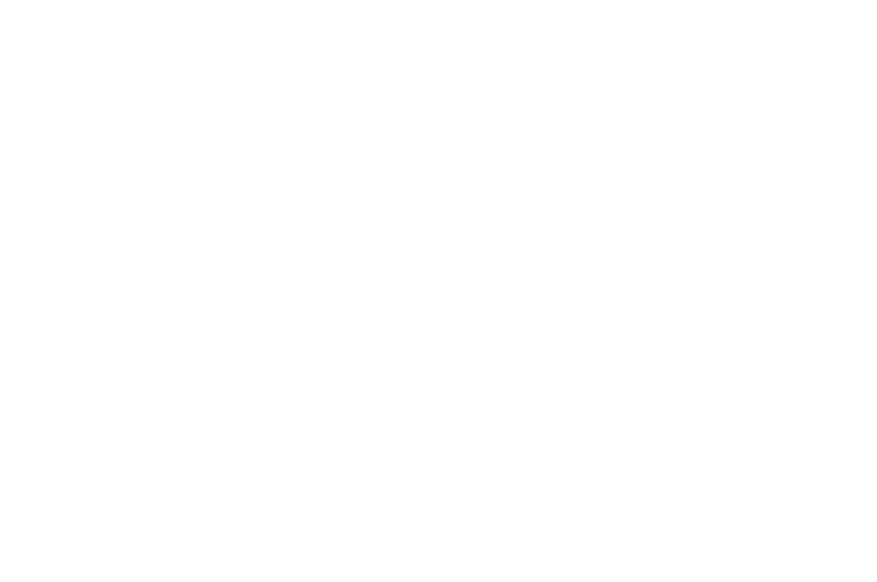 OFFICIAL SELECTION - SCI-FI-LONDON Film Festival - 2018.png