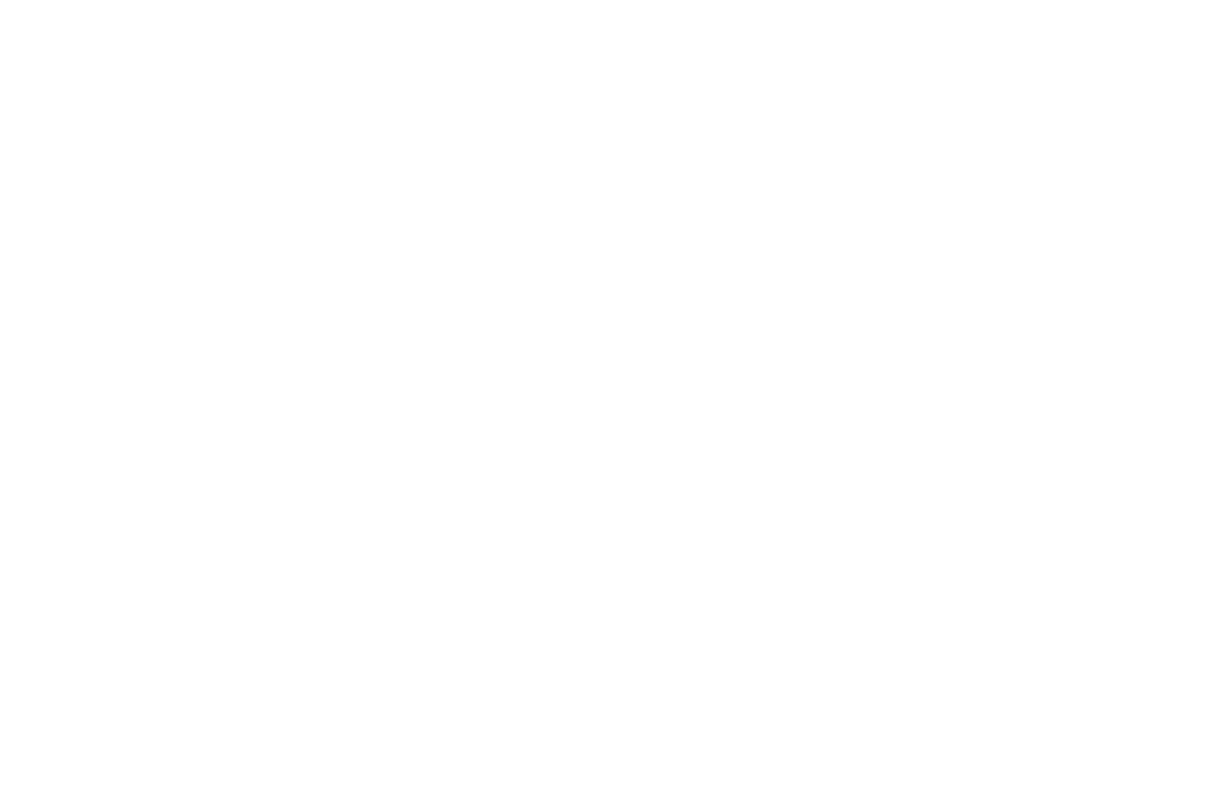 OFFICIAL SELECTION - Boston Science Fiction Film Festival - 2019.png