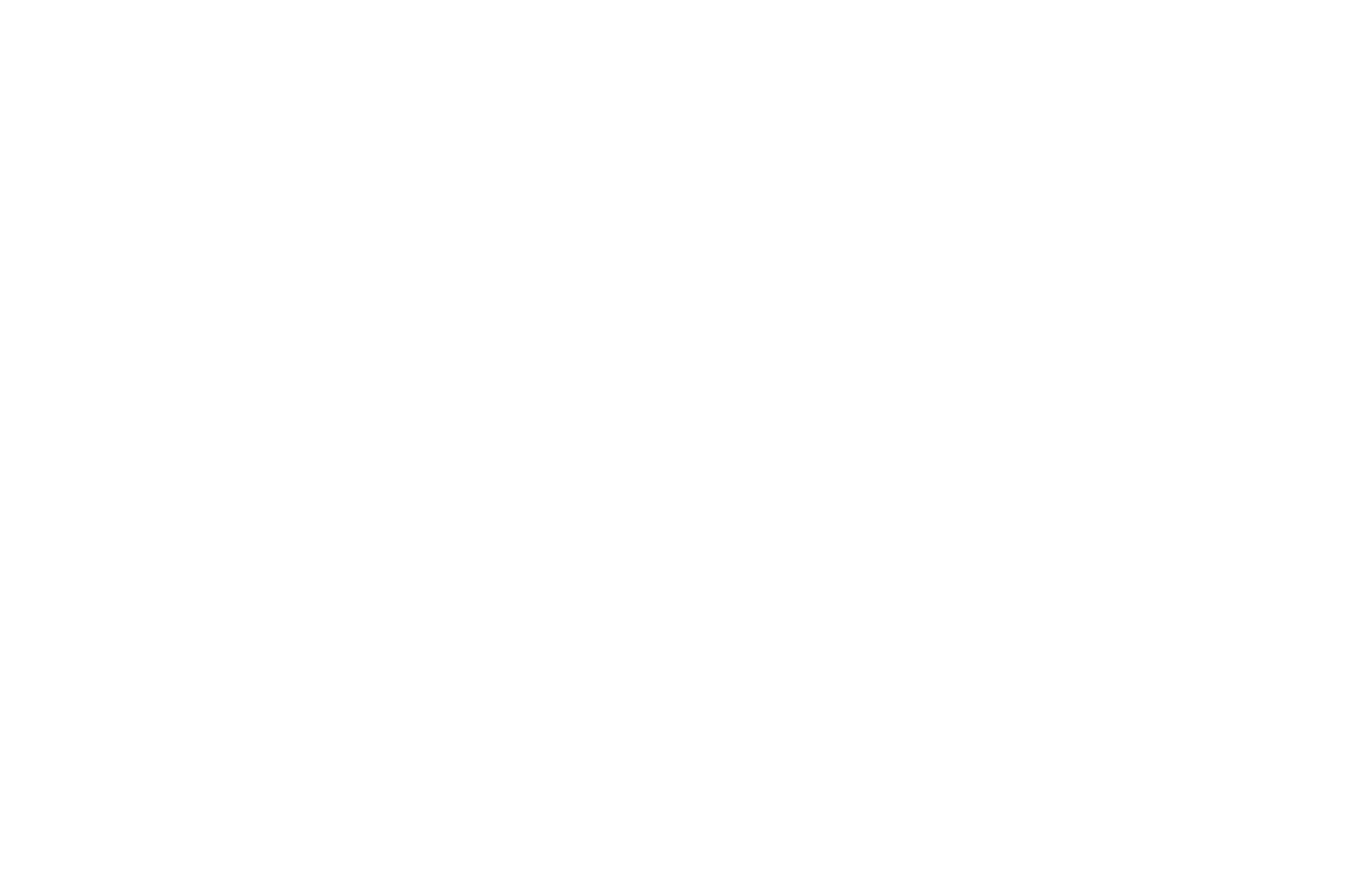 OFFICIAL SELECTION - Emerging Filmmakers Night - 2018.png