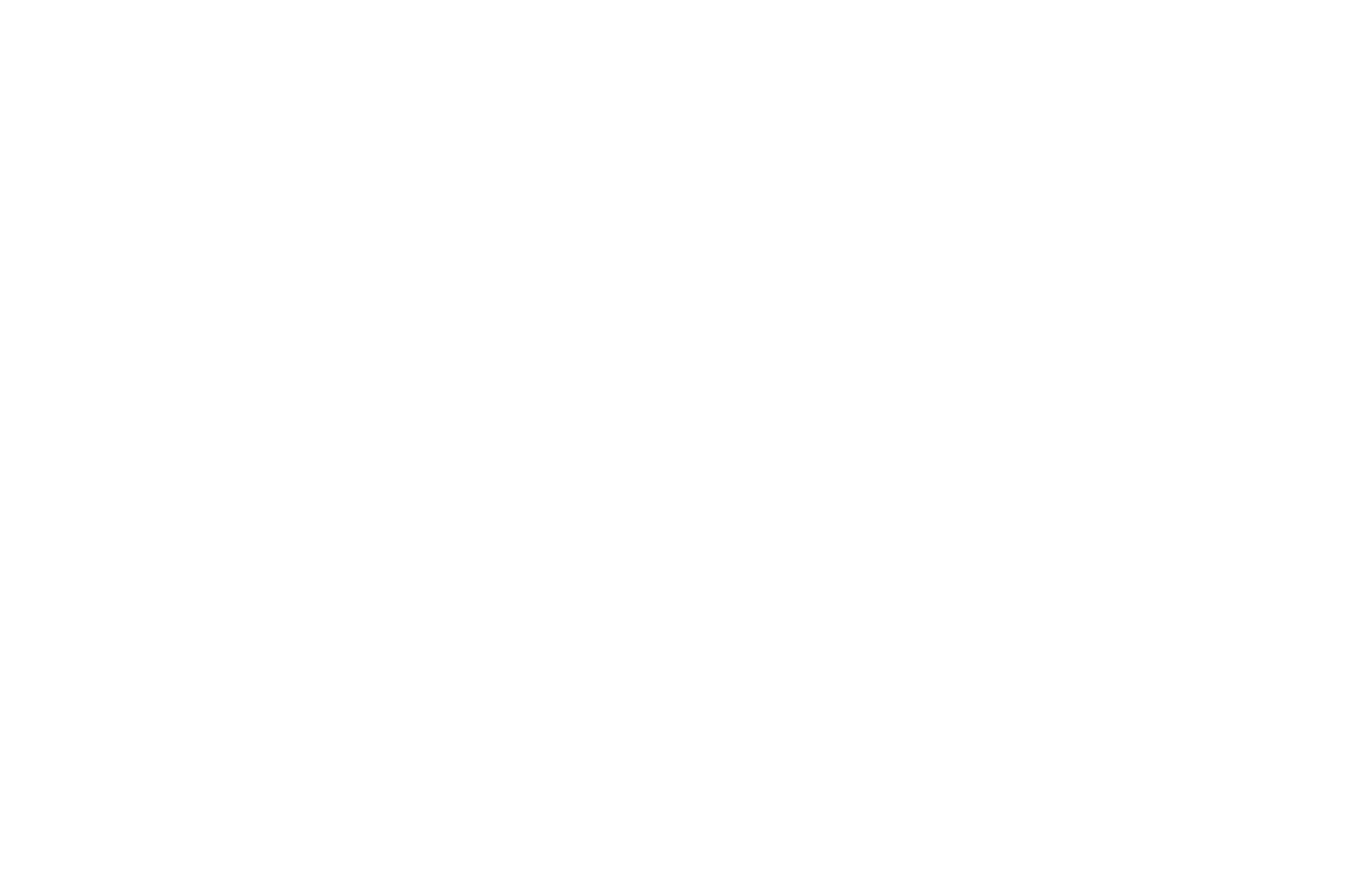 OFFICIAL SELECTION - Berlin Sci-Fi Filmfest - 2018.png