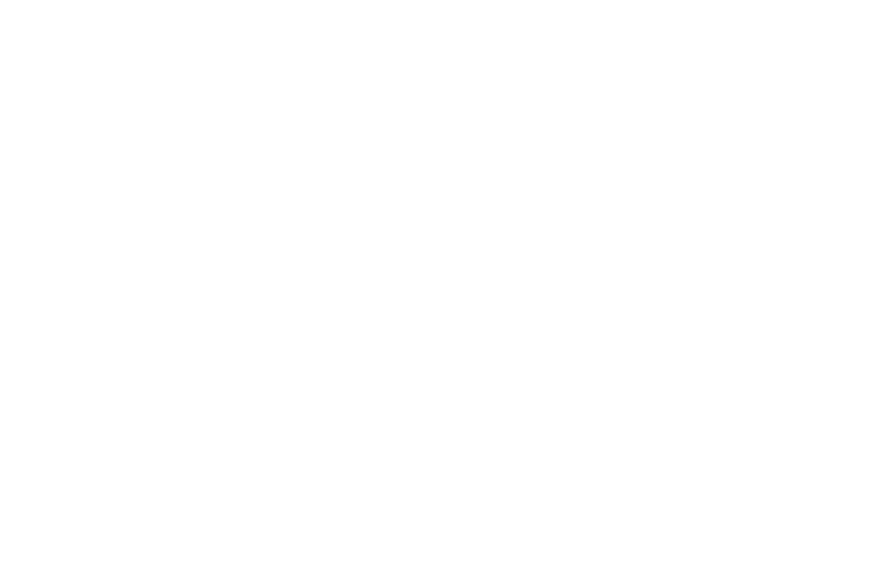 OFFICIAL SELECTION - Muestra Internacional de Cine Astronmico - 2018.png