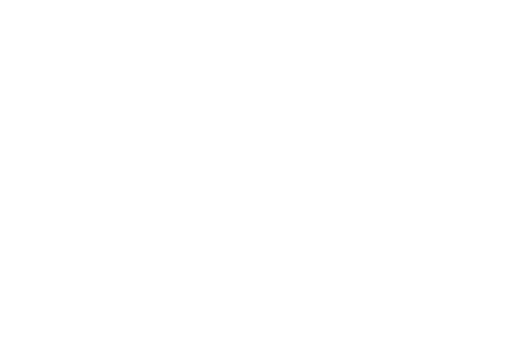 OFFICIAL SELECTION - Bloodstained Indie Film Festival - 2018.png