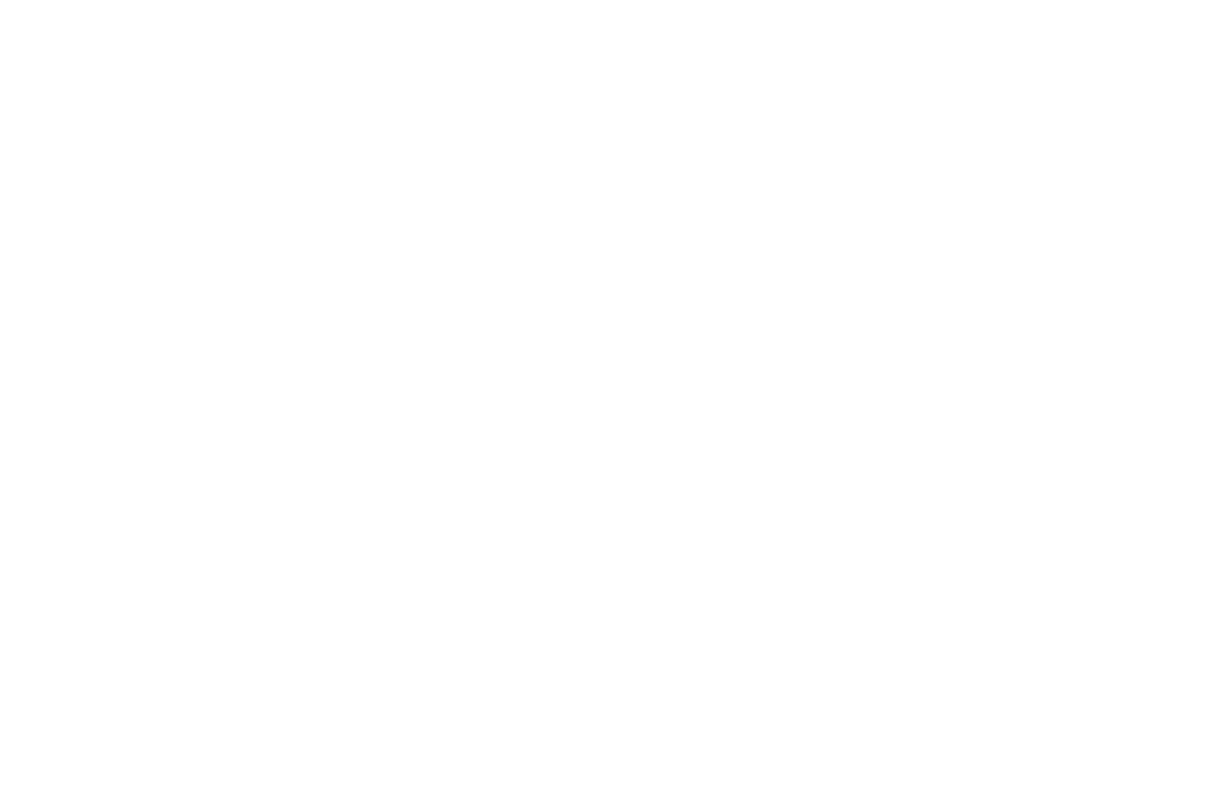 OFFICIAL SELECTION - Astronomy On Tap Leiden - 2018.png