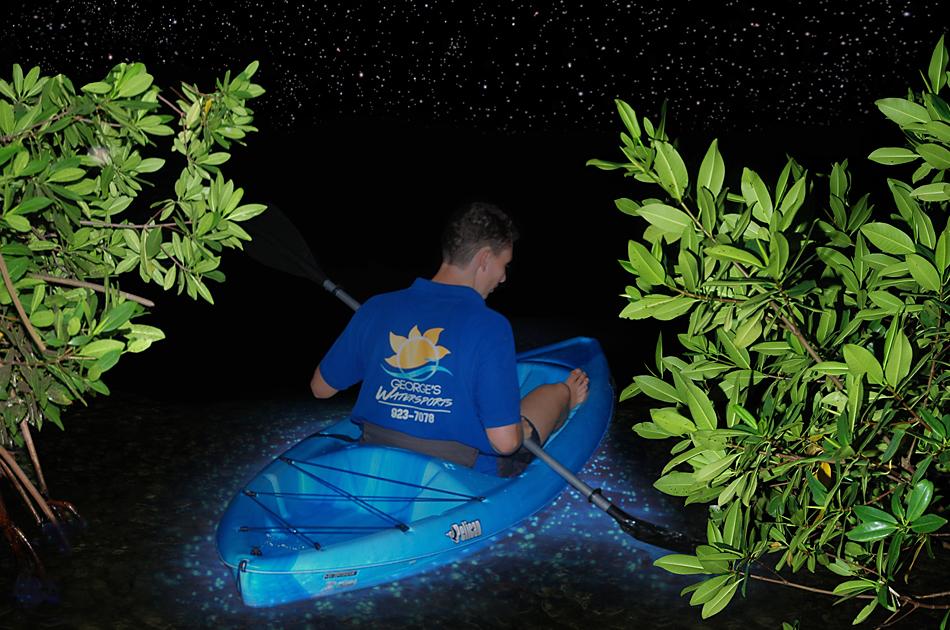 bioluminescence.jpg