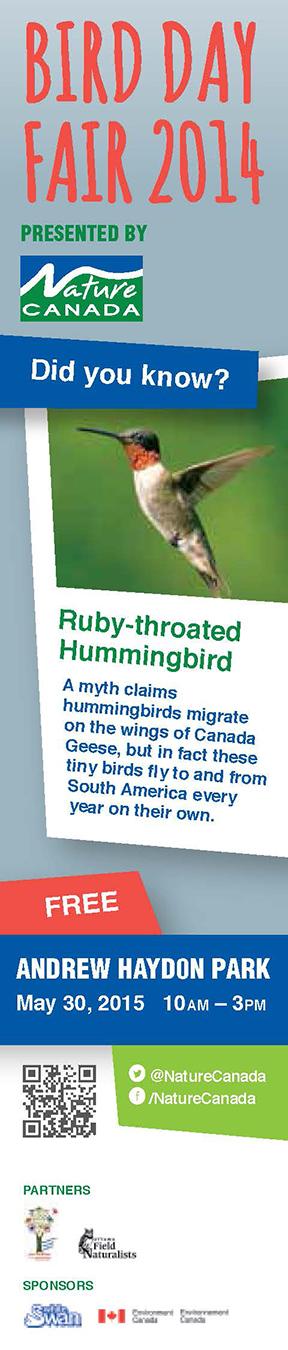 2015-03-17-BirdDayBookmark-hummingbird-VIEW_Page_1.jpg