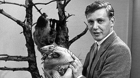 David-Attenborough-Zoo-Quest.jpg