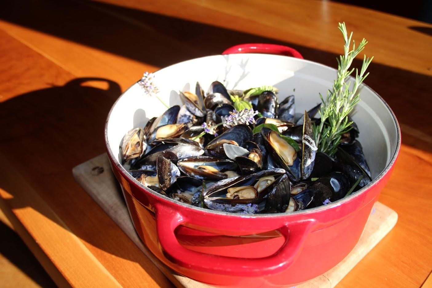 musselssss.JPG