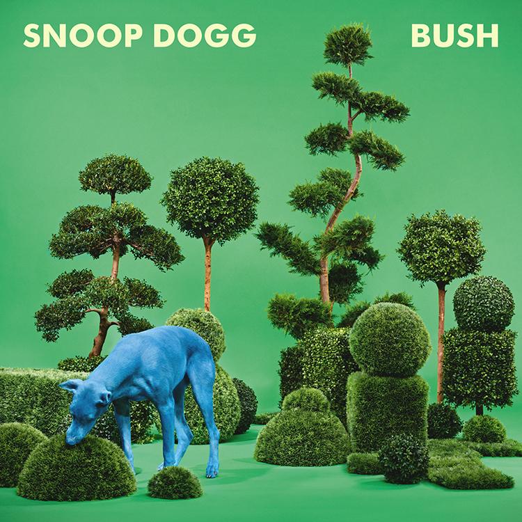 """""""Funky Snoop"""" - July 25, 2015"""