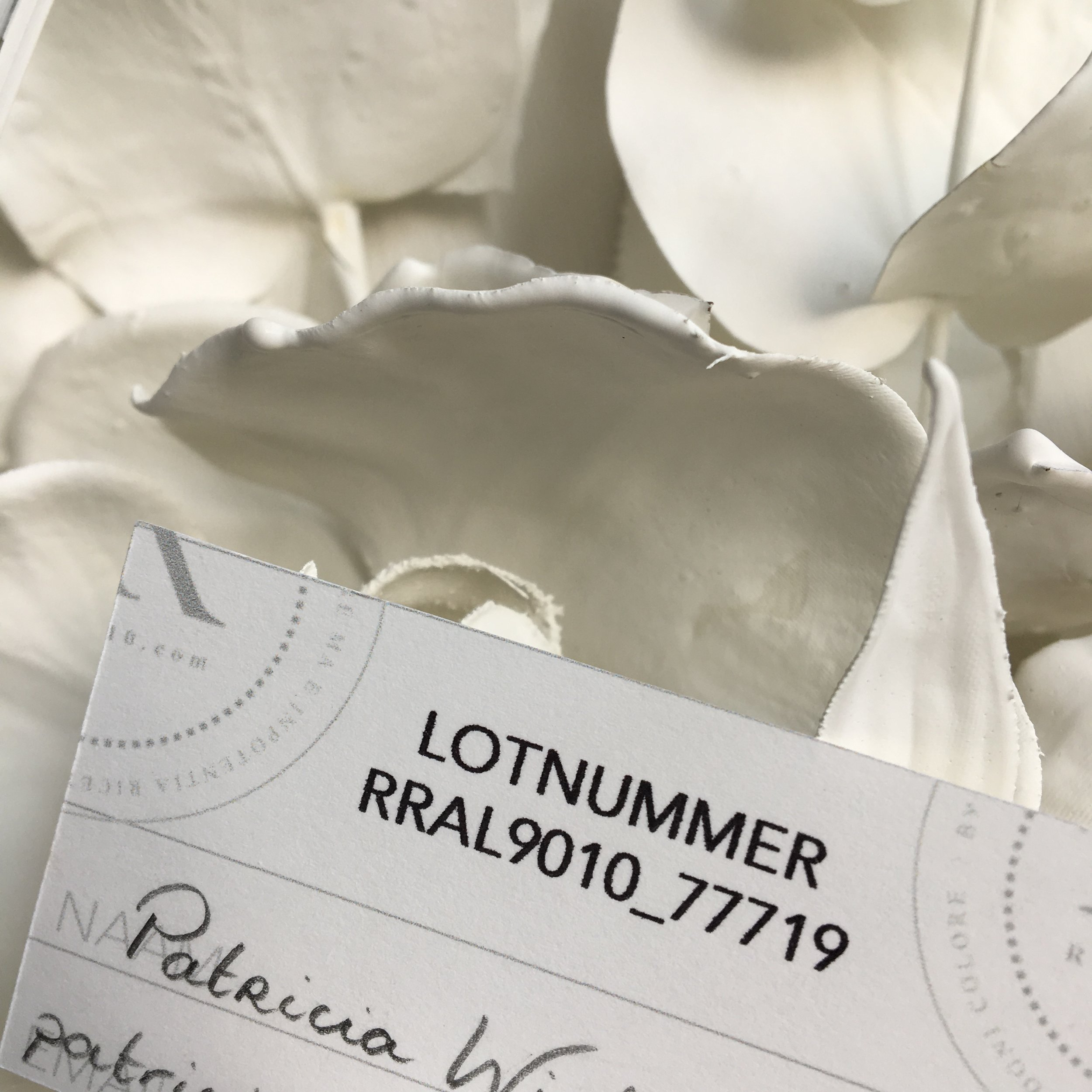 RRAL9010_loterijwinnaar_2.JPG