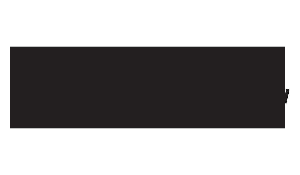 feiyutech-logo.png