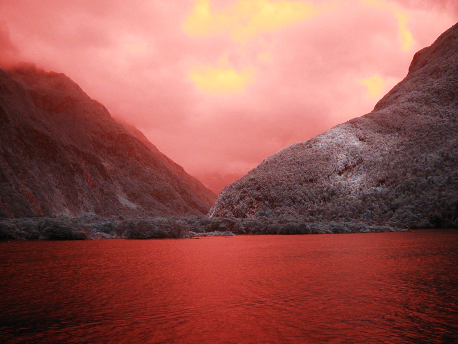 Milford_Red_Color_001.jpg