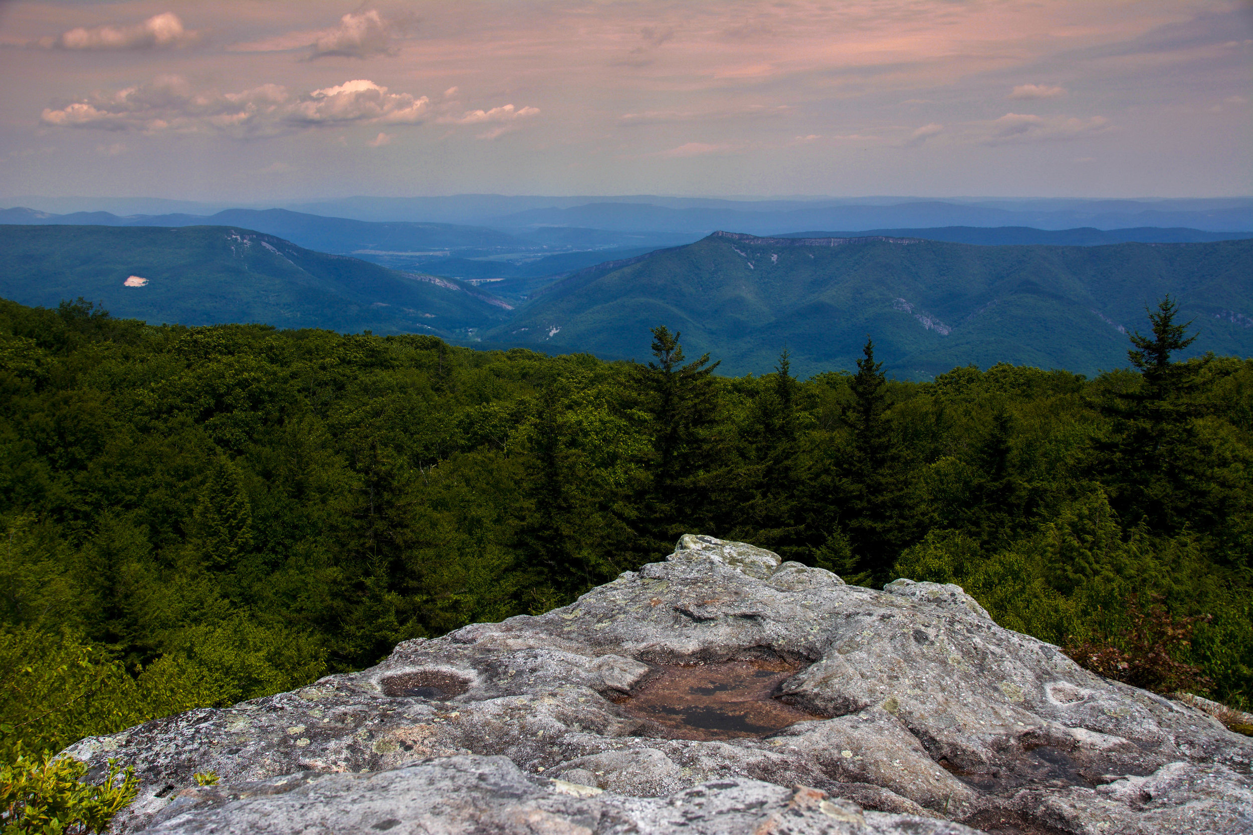 Dolly Sods Wilderness (by Austin O'Connor)