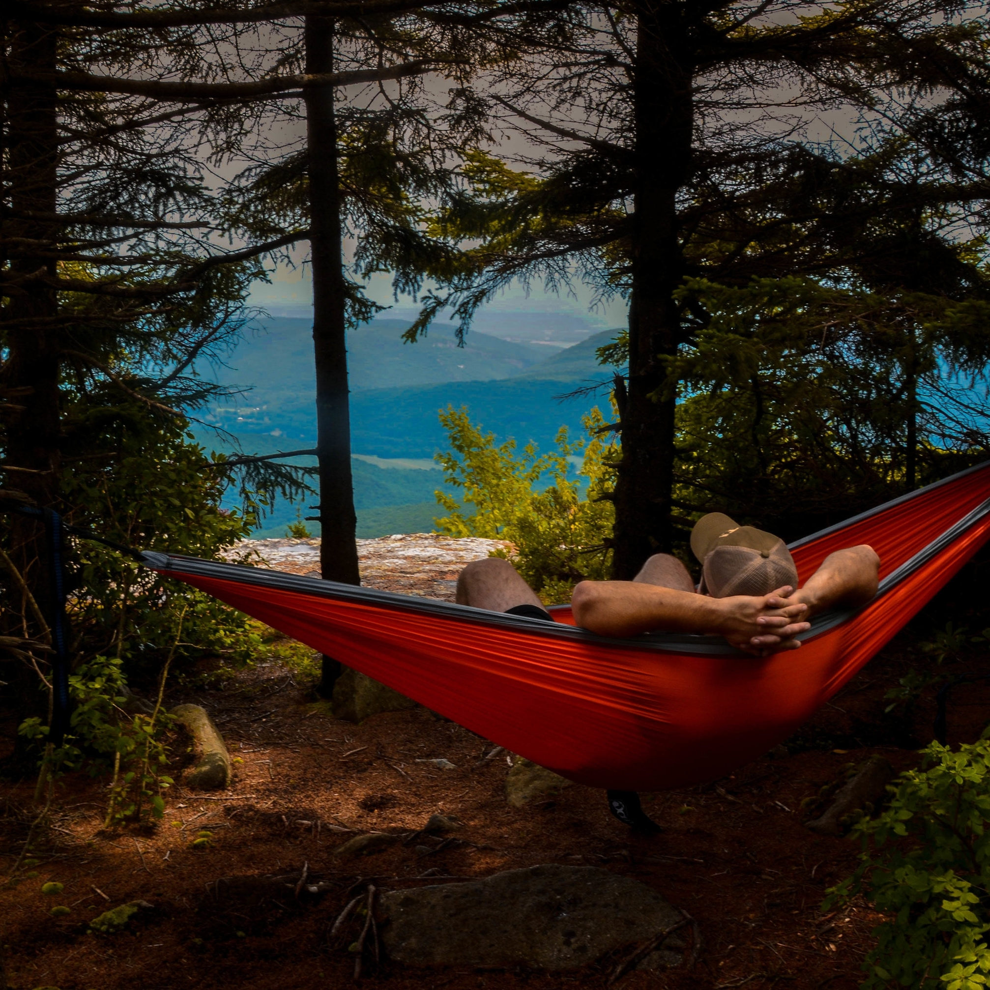 Tyler Pralley enjoying the scenic views of Dolly Sods (by Austin O'Connor)