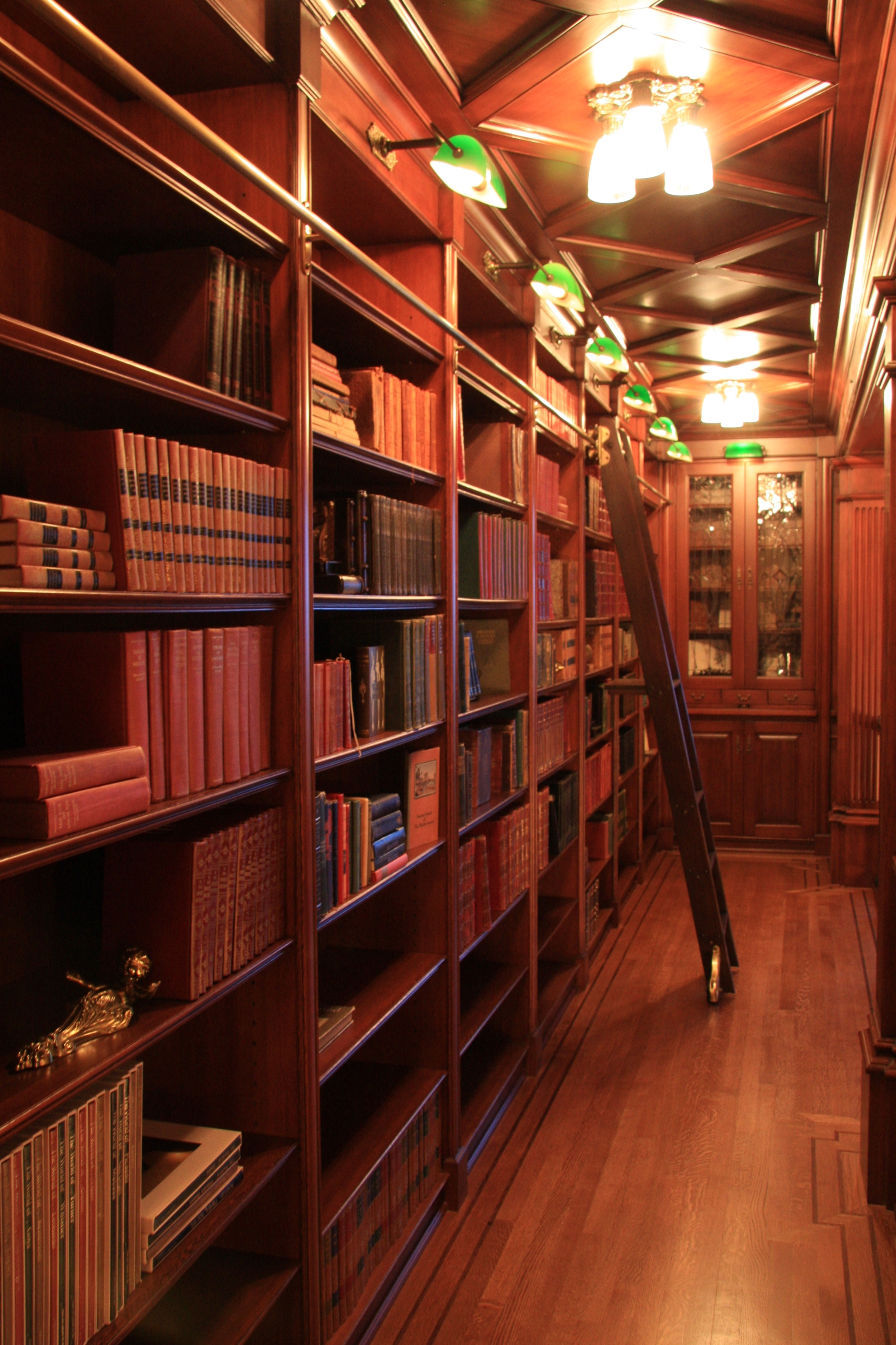 Burrows_Bookshelf