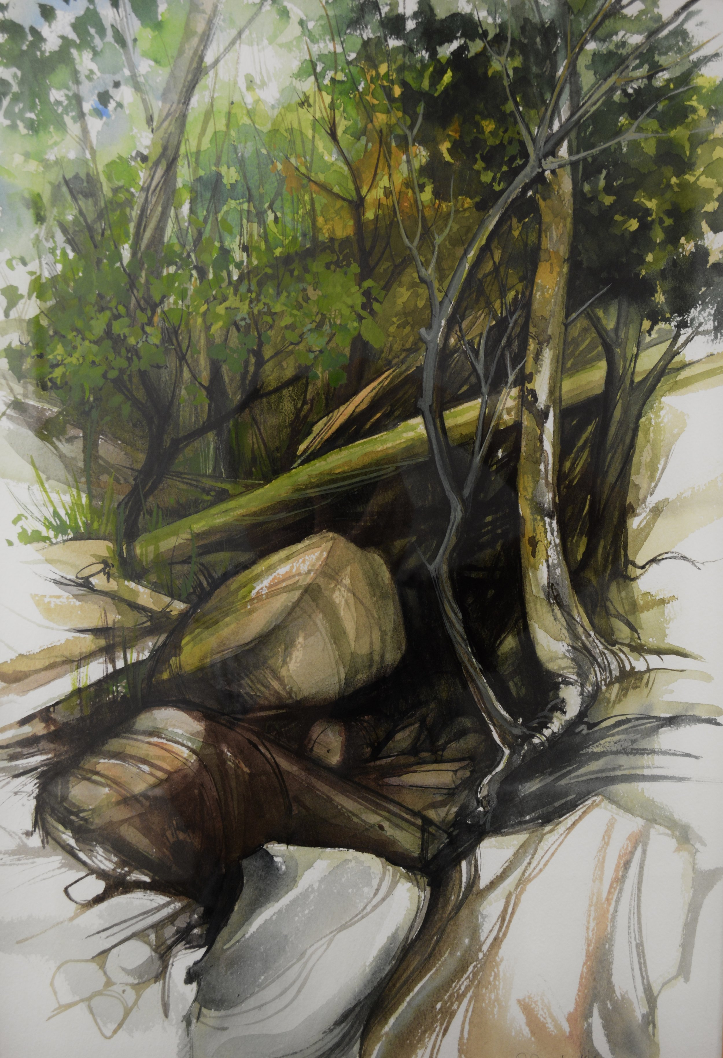 Deep Woods Stream - 21