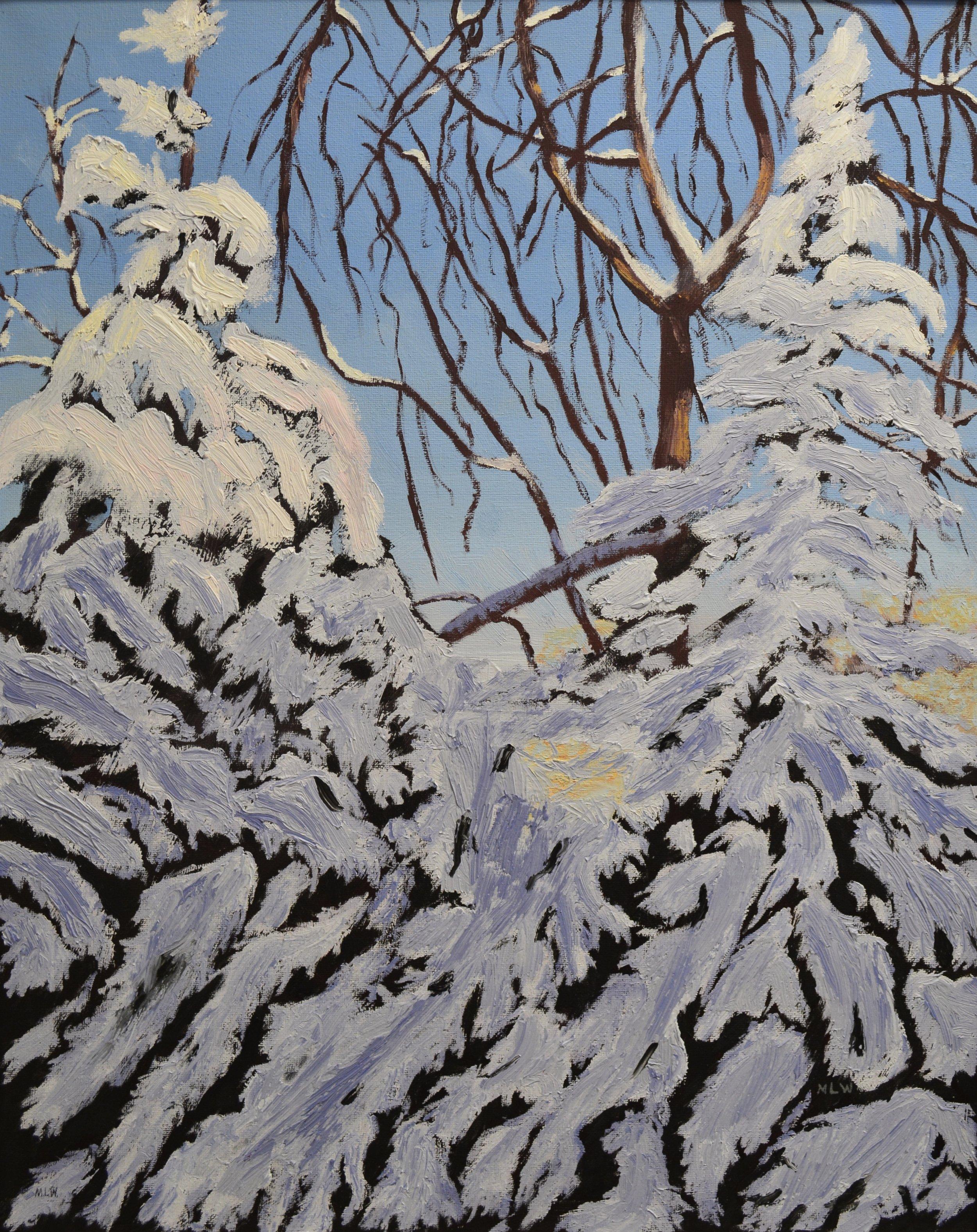 Backyard Snow - 22