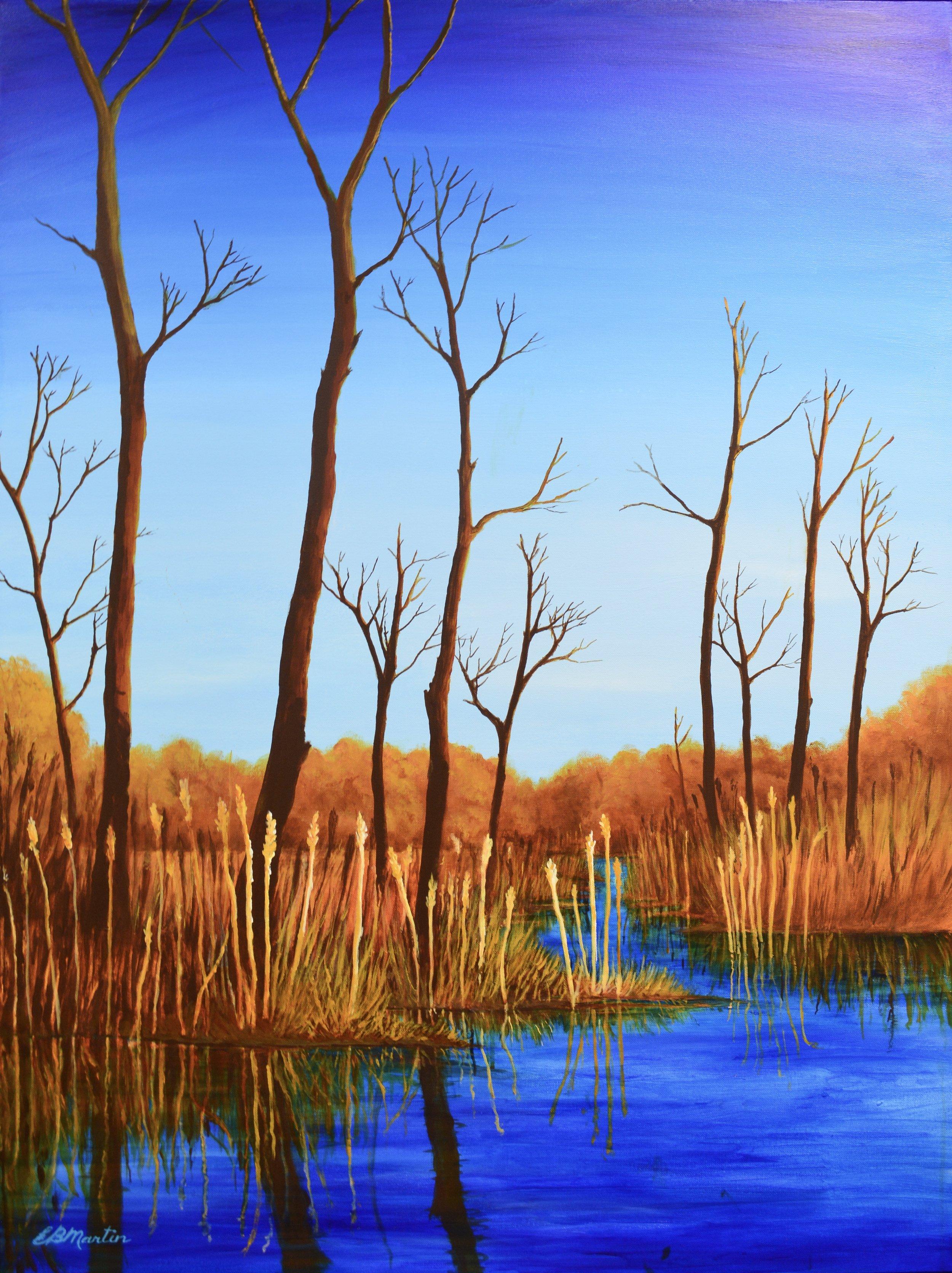 Minnesing Wetlands - 30