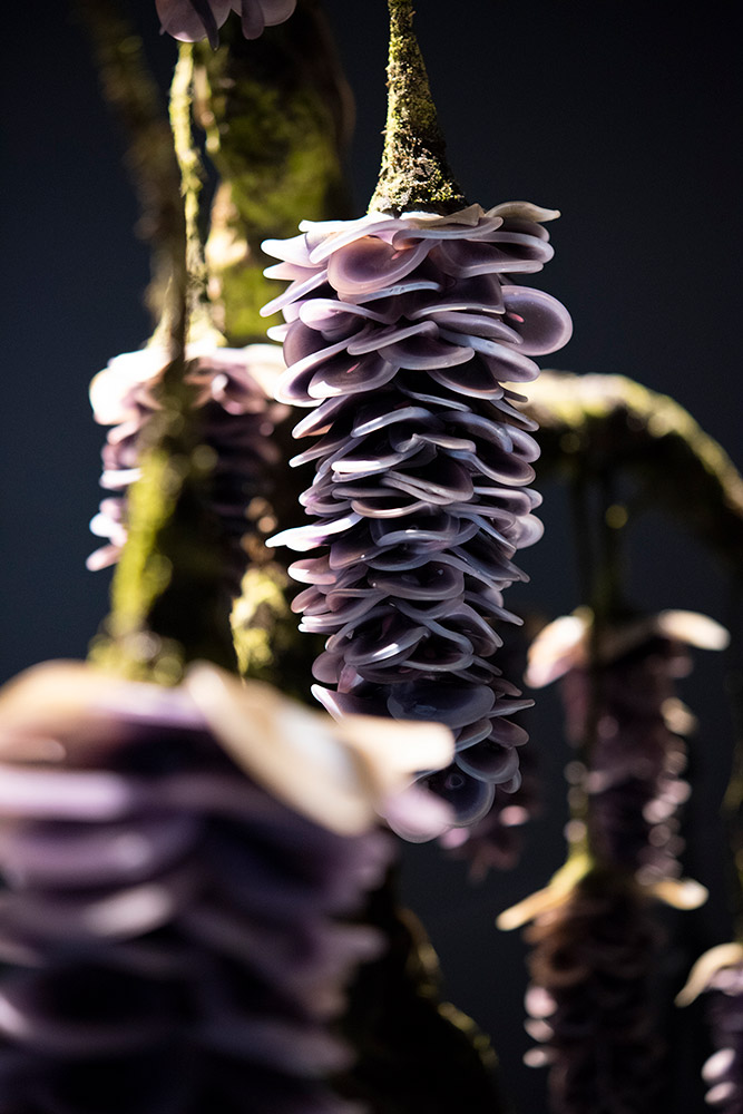 Wisteria, 2018 - detail Blown and sculpted glass