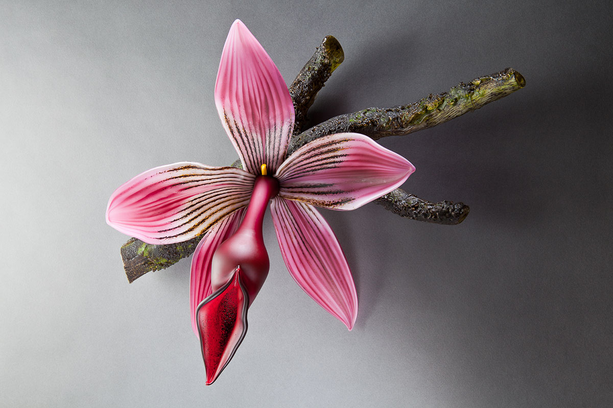 Blush Epidendrum - Gigantica Blown and Sculpted Glass 23 x 17 x 9