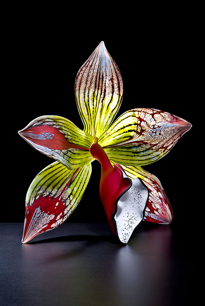 Red Epidendrum - Gigantica II Blown and Sculpted Glass 16 x 16 x 6