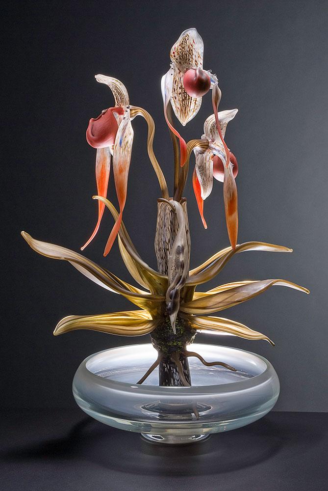 Phragmipedium - Plant Series Blown and Sculpted Glass 28 x 16 x 11