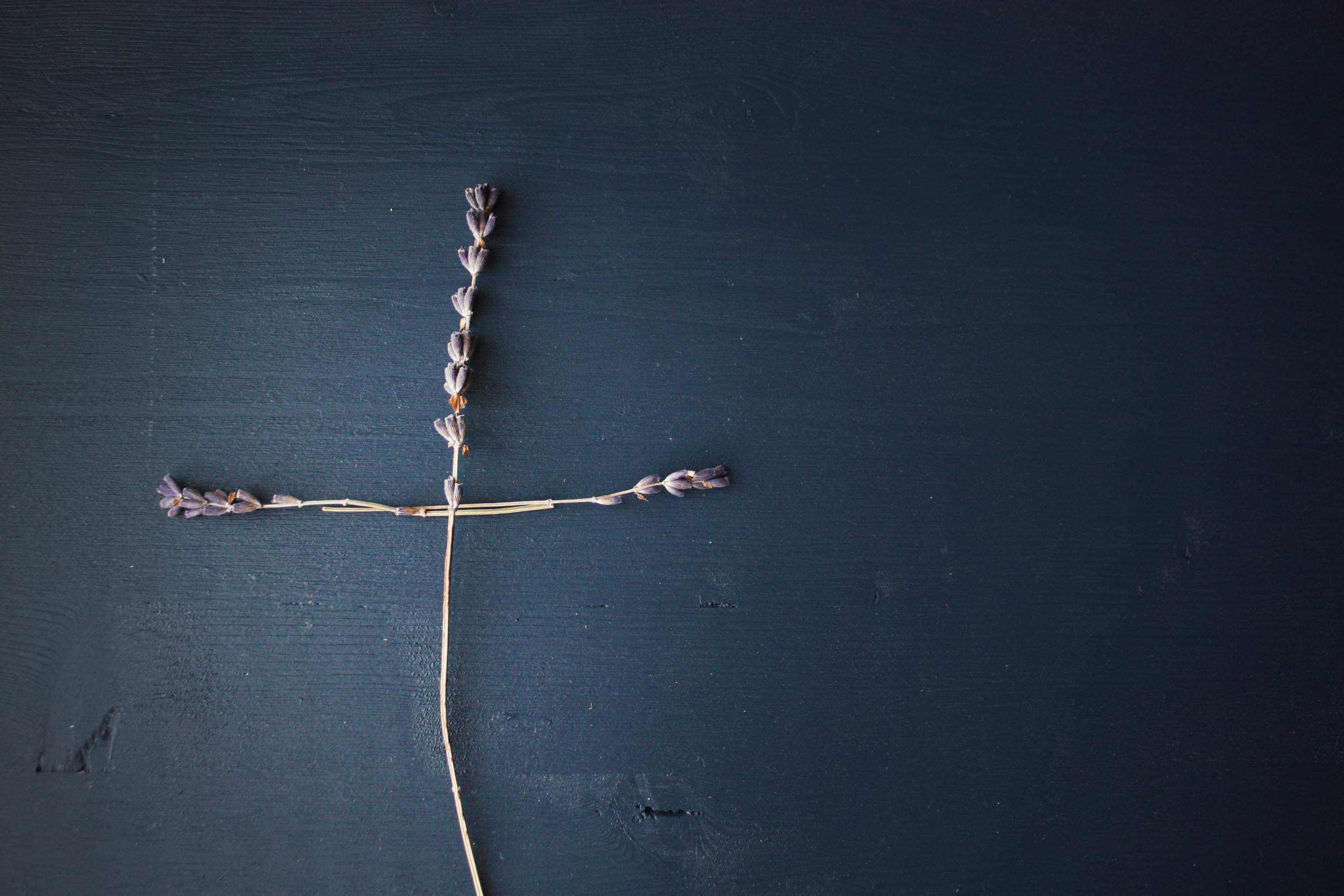 What Does Co-Crucified Mean? -